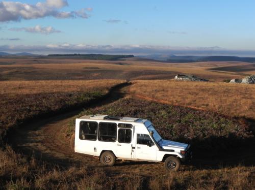 nyika-safari-malawi-africa