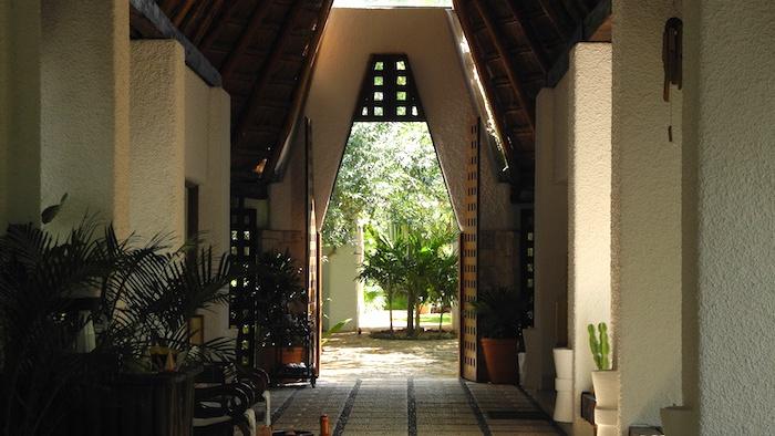 Things_to_see_riviera_Maya_Mexico_davidsbeenhere