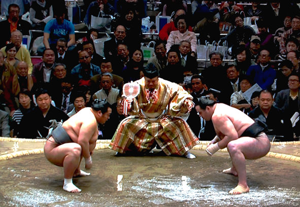 Sumo-in-Tokyo