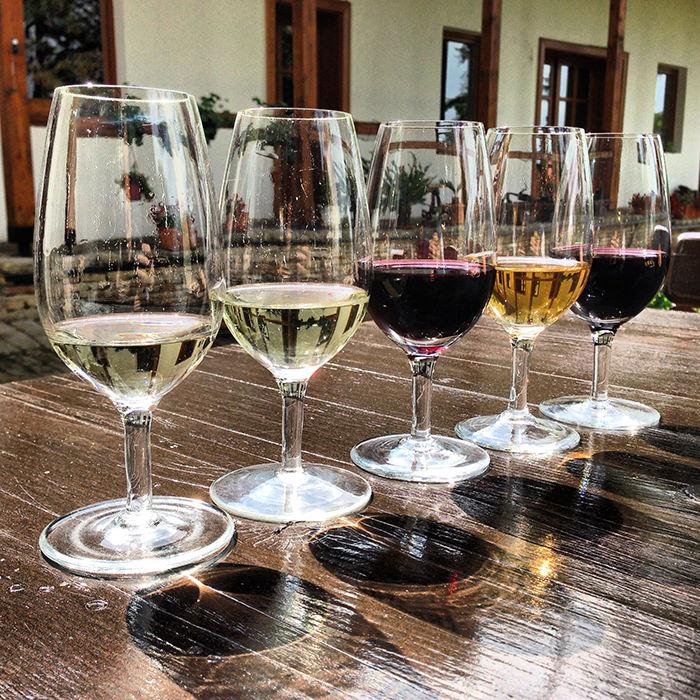 Sremski_Karlovci_Zivanovic_Winery_Serbia