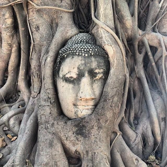 Ayutthaya_Thailand_Buddha
