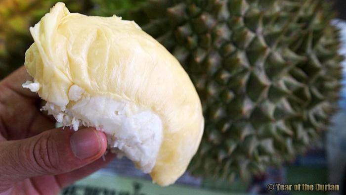 Chanthaburi_Durian_Thailand_SEASIA
