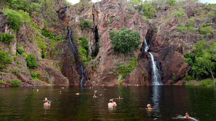 litchfield-national-park-swimming-davidsbeenhere