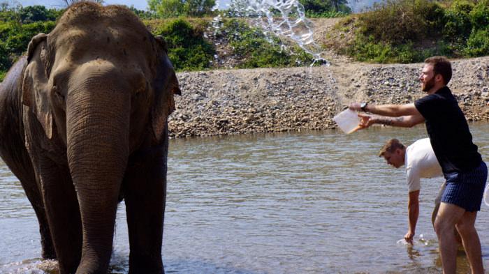 elephant-nature-park-bathing-davidsbeenhere