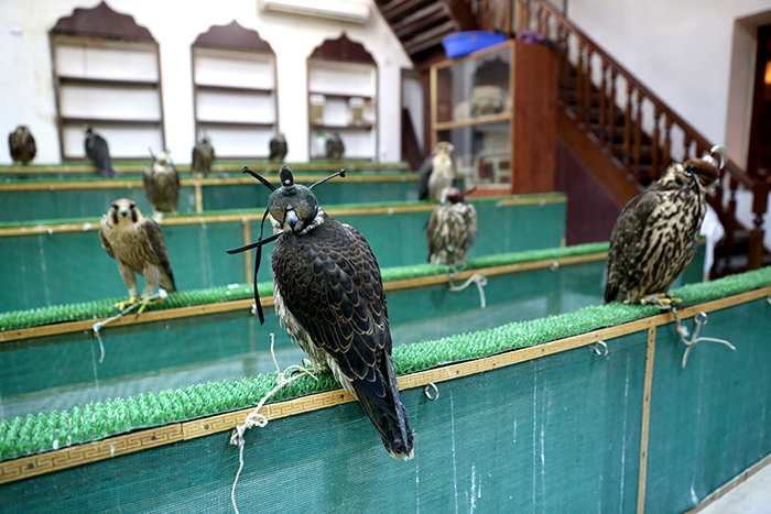 Top_Things_to_See_and_Do_in_Doha_Qatar_Falcon_Souq2