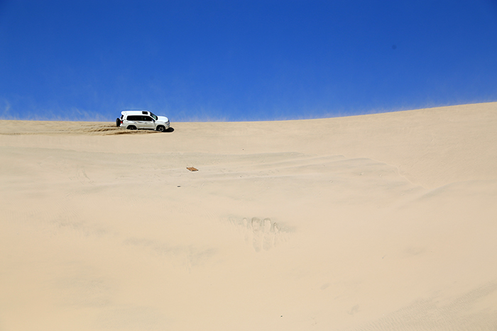 Top_Things_to_See_and_Do_in_Doha_Qatar_Sand_Dune_Bashing2