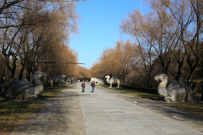 things-to-do-in-beijing-davidsbeenhere-36