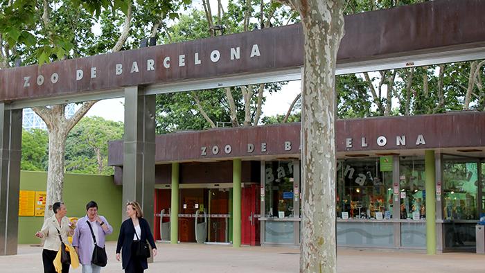 Barcelona_Zoo_Catalunya_Spain_Europe_Davidsbeenhere