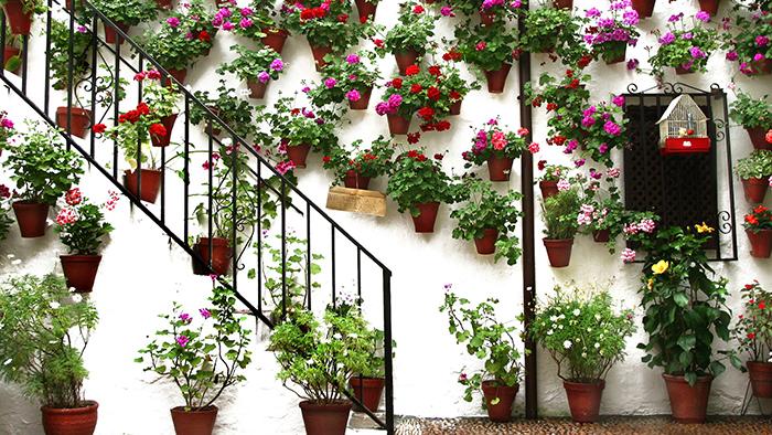 Cordoba_Andalusia_Spain_Davidsbeenhere