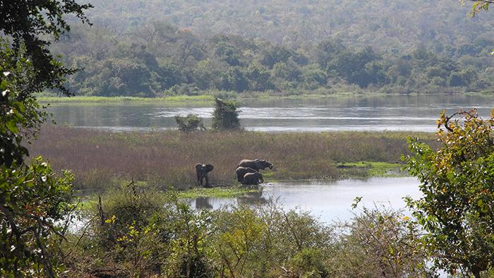 Majete Wildlife Reserve_Malawi_Africa_Davidsbeenhere2