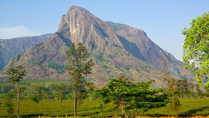 Mount Mulanje_Malawi_Africa_Davidsbeenhere