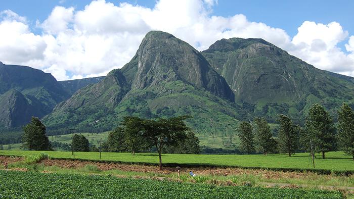 Mount Mulanje_Malawi_Africa_Davidsbeenhere3