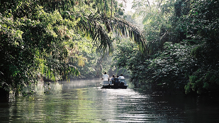 Boat_Tour_Tortuguero_National_Park_Costa_Rica_Central_America_Davidsbeenhere