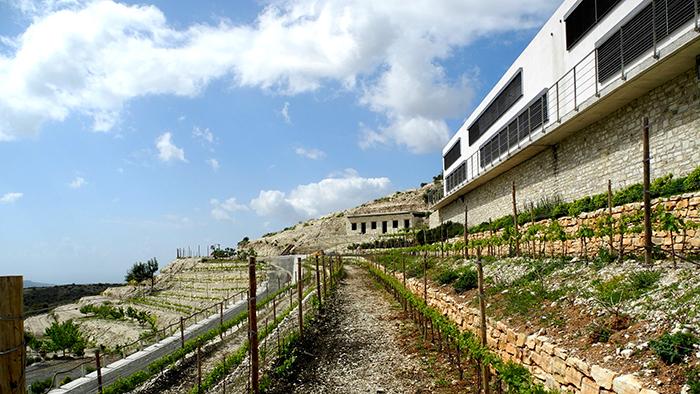 Dafermou_Winery_Lefkara_Cyprus_Europe_Davidsbeenhere2