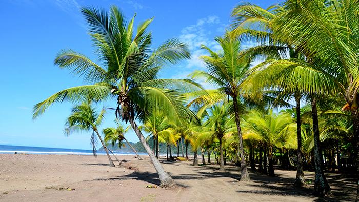 Jaco_Costa_Rica_Central_America_Davidsbeenhere3