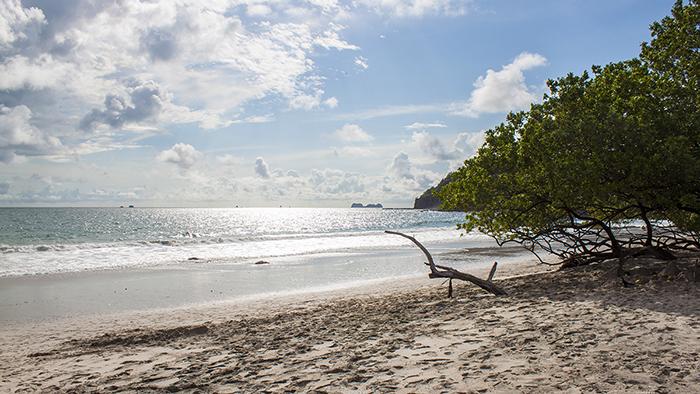 5_Things_to_Do_in_Tamarindo_Costa_Rica_Davidsbeenhere11