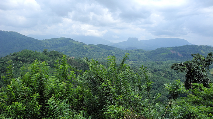 5_things_to_see_in_Kandy_Sri_Lanka_Davidsbeenhere