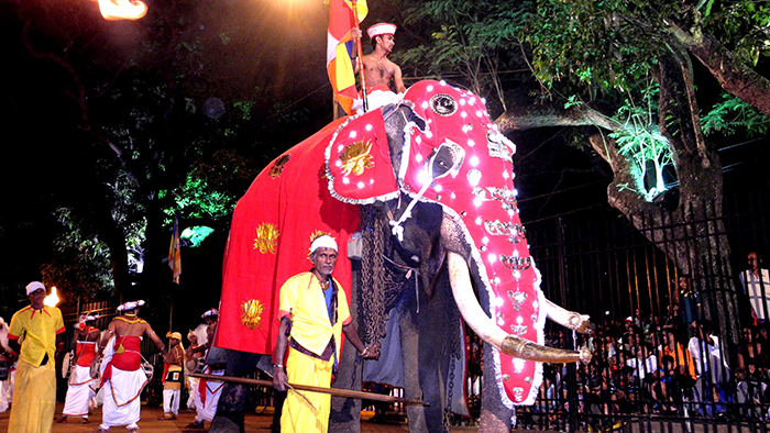 5_things_to_see_in_Kandy_Sri_Lanka_Davidsbeenhere26