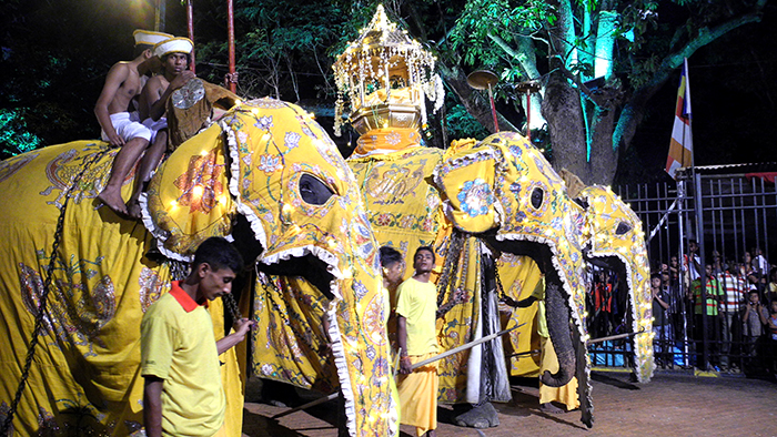 5_things_to_see_in_Kandy_Sri_Lanka_Davidsbeenhere28