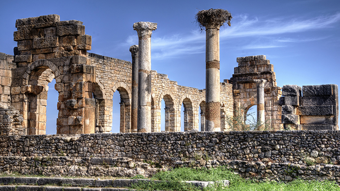 Ancient_Roman_City_Volubilis_Morocco_Africa_Davidsbeenhere10