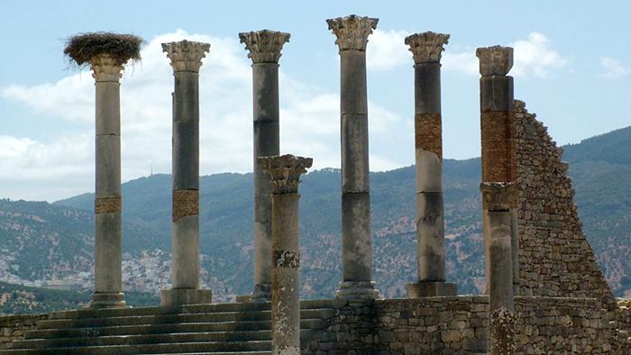 Ancient_Roman_City_Volubilis_Morocco_Africa_Davidsbeenhere6