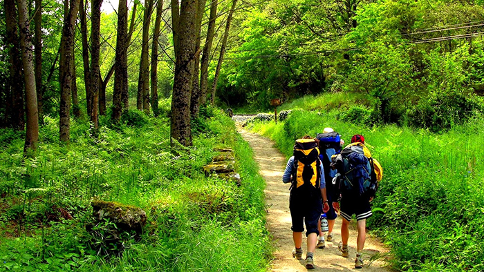 The_Best_Day_Trips_from_Lugo_Galicia_Spain_Europe_davidsbeenhere102