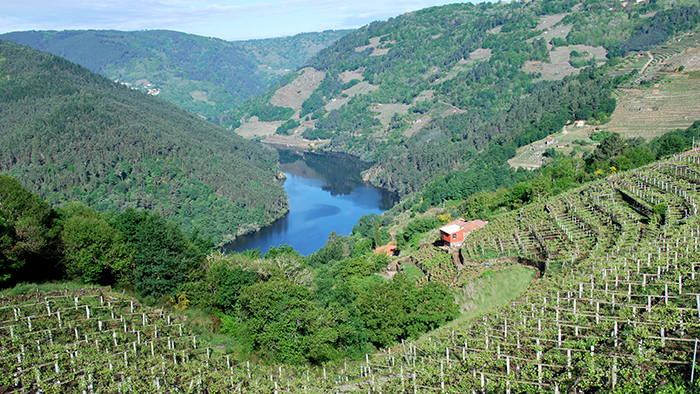 The_Best_Day_Trips_from_Lugo_Galicia_Spain_Europe_davidsbeenhere105
