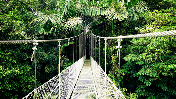 Things_to_See_and_Do_in_La Fortuna_Costa_Rica_Davidsbeenhere10