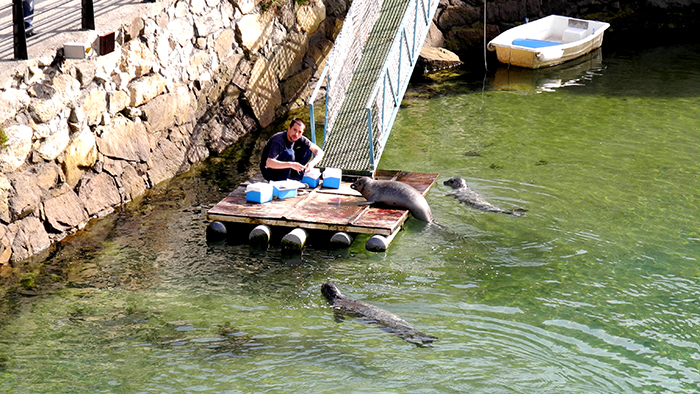 Top_10_Things_to_Do_in_La Coruña_Galicia_Spain_davidsbeenhere2