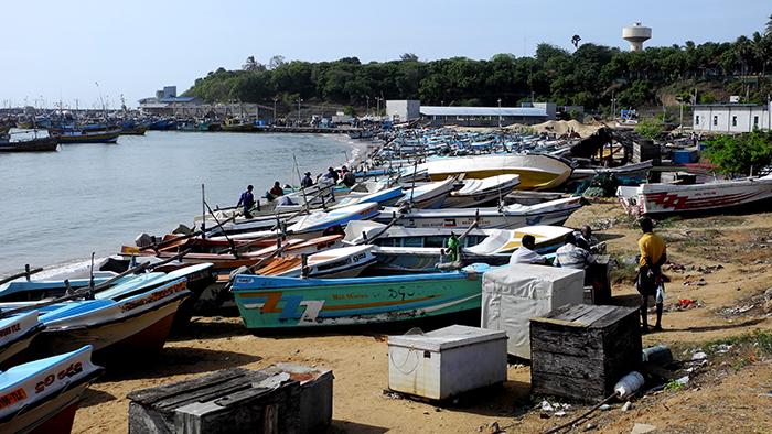 What_to_See_in_yala_national_park_Sri_Lanka_Asia_Davidsbeenhere17