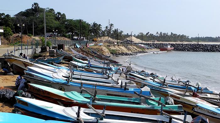 What_to_See_in_yala_national_park_Sri_Lanka_Asia_Davidsbeenhere18